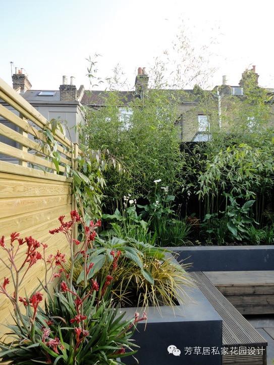 小庭院绿化设计改造也能高大上