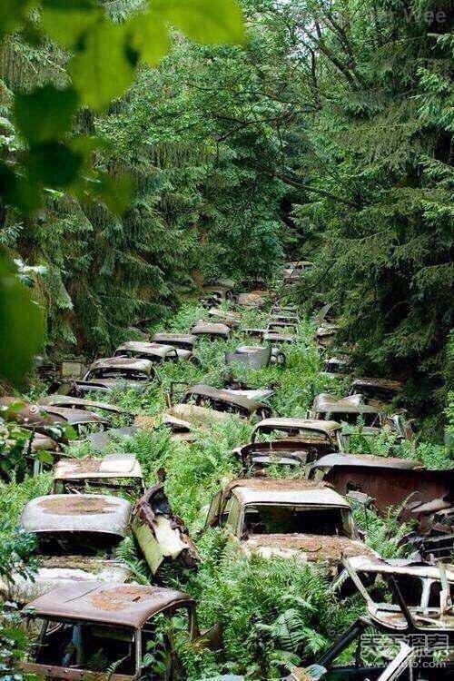 二战时期美军遗留在阿登森林的汽车