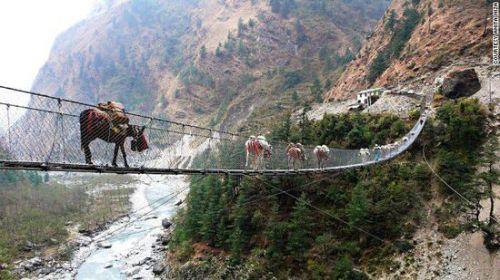 让你流连忘返的风景 盘点13座惊险奇美的悬索桥