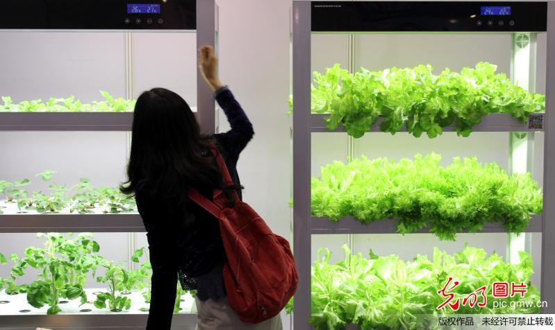 智能水培蔬菜种植机亮相苏州